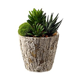 D&W Silks Aloe and Succulents in Weathered Oak Look Planter