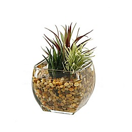 D&W Silks Aloe and Easter Grass in Glass Cube