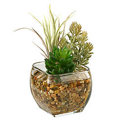 D&W Silks Succulent and Flocked Burro Tail in Glass Cube