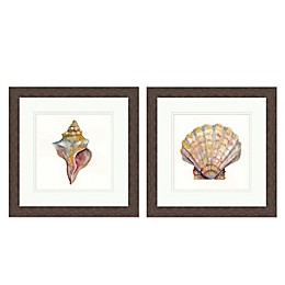 Simple Shell Wall Art Collection