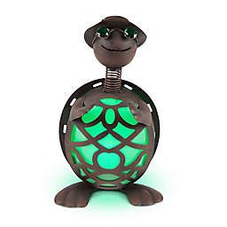 Destination Summer Solar Lighted Metal Turtle in Brown/Green