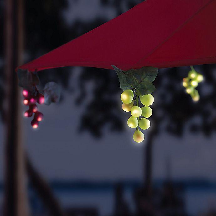 Alternate image 1 for Solar 64-Bulb LED Grapevine Garland Umbrella String Lights