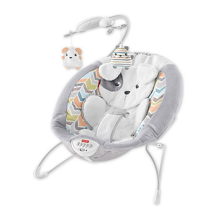 Alternate image 1 for Fisher-Price® Sweet Snugapuppy Dreams Bouncer