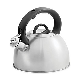 SALT™ 2.1-Quart Stainless Steel Tea Kettle