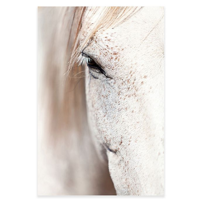 Alternate image 1 for Marmont Hill 12-Inch x 18-Inch Gentle Eye Canvas Wall Art