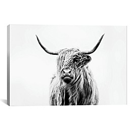Highland Cow 18-Inch x 12-Inch Canvas Wall Art