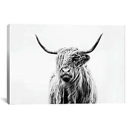 Highland Cow 40-Inch x 26-Inch Canvas Wall Art
