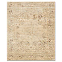 ED Ellen DeGeneres Trousdale Area Rug in Desert/Red