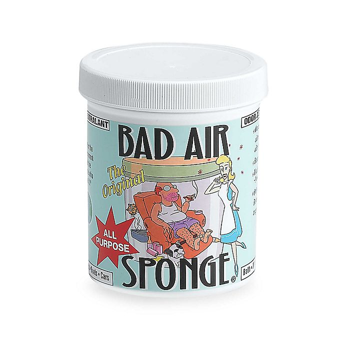 Alternate image 1 for Bad Air Sponge 1lb