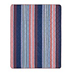 Blake Indoor/Outdoor Stripe Throw Blanket in Navy/Red