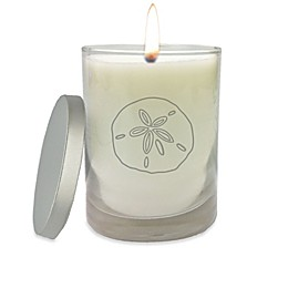 Carved Solutions Gem Collection Sand Dollar Glass Jar Candle