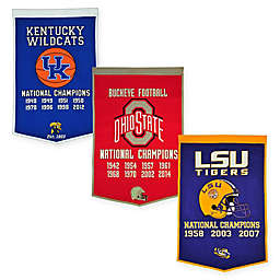 Collegiate Dynasty Banner Collection
