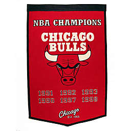 NBA Chicago Bulls Banner