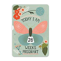 Milestone™ Pregnancy Turn Wheel Photo Card