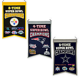 NFL Super Bowl Championship Banner Collection