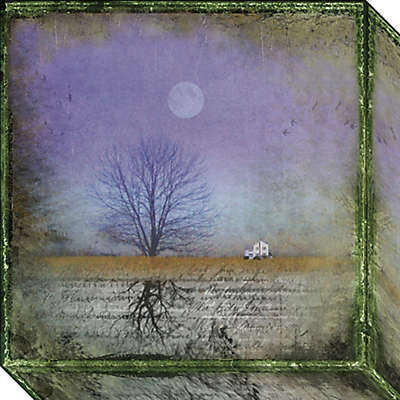 Moonlight in Vermont Canvas Wall Art
