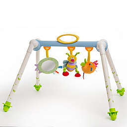 Taf™ Toys Take-To-Play Baby Gym