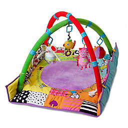 Taf Toys™ Newborn Gym Play Mat