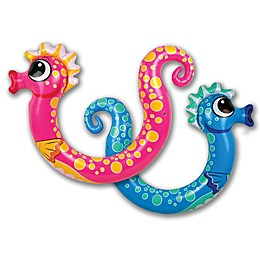 Poolmaster 2-Pack Seahorse Noodle