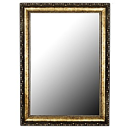 Hitchcock-Butterfield Tibetan Silver-Aged 30-Inch x 42-Inch Wall Mirror in Gold