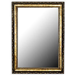 Hitchcock-Butterfield Tibetan Silver-Aged 36-Inch x 46-Inch Wall Mirror in Gold