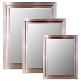 Hitchcock-Butterfield Decorative Wall Mirror in Satin Brushed Nickel Silver