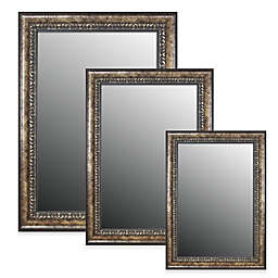 Hitchcock-Butterfield Euro Olde World Vintage Wall Mirror in Silver