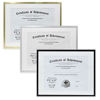Lawrence Frames 11-Inch x 14-Inch Matted Aluminum Document Frame