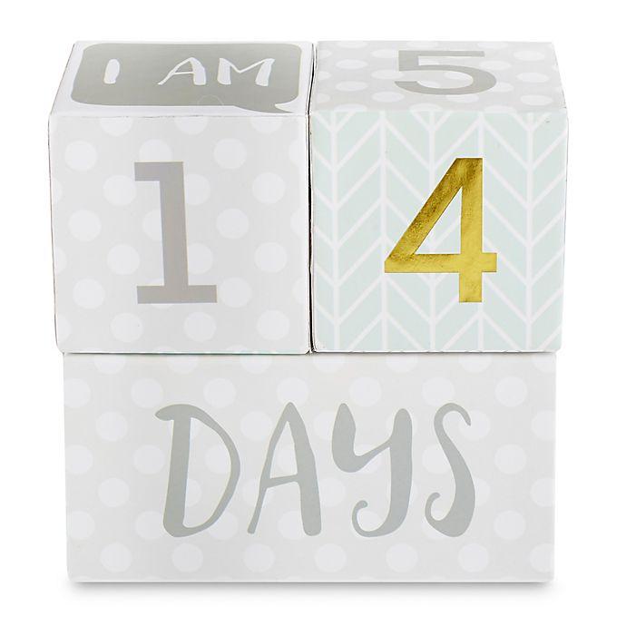 Alternate image 1 for Baby Aspen My First Milestone Blocks in White/Grey