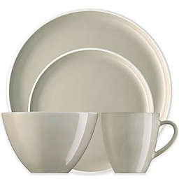 Rosenthal Arzberg Profi Dinnerware Collection in Linen