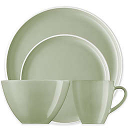 Rosenthal Arzberg Profi Dinnerware Collection in Willow