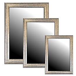 Hitchcock-Butterfield Decorative Wall Mirror in Inca Vintage Silver
