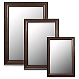Hitchcock-Butterfield Traditional Accent Mirror in Mahogany/Black