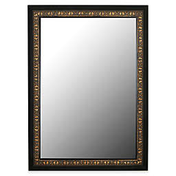 Hitchcock-Butterfield 29-Inch x 41-Inch Mumbai Wall Mirror in Vintage Copper/Black