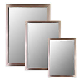 Hitchcock-Butterfield Royal Satin Brushed Nickel Wall Mirror in Silver
