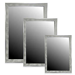 Hitchcock-Butterfield Scratched Silver Profile Bevel Wall Mirror in White Wash