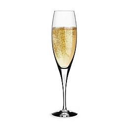 Orrefors Intermezzo Satin Champagne Flute