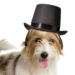 Lillian Rose™ Top Hat for Dogs