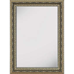 Hitchcock-Butterfield 19-Inch x 37-Inch Venetian Washed Mirror in Silver