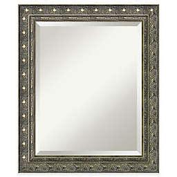Amanti Art Barcelona 22-Inch x 28-Inch Bathroom Mirror in Gold