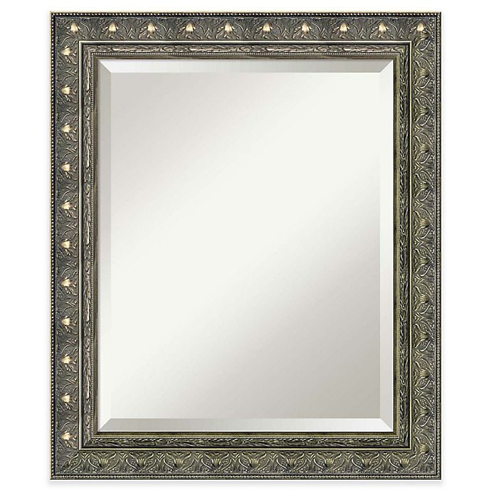 Alternate image 1 for Amanti Barcelona 20-Inch x 24-Inch Bathroom Wall Mirror in Champagne