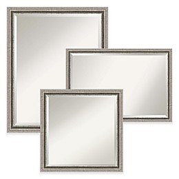 Amanti Art Bel Volto Wall Mirror in Nickel/Silver