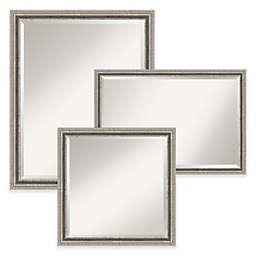 Amanti Art Bel Volto Wall Mirror in Nickel/Silver
