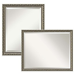 Amanti Art Parisian Silver Bathroom Mirror in Nickel/Silver