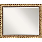 Amanti Art Florentine 26-Inch x 32-Inch Rectangular Wall Mirror in Gold