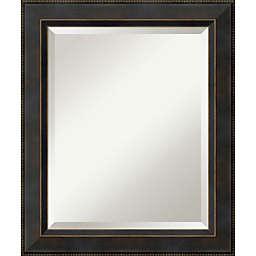 Amanti Art Signore 20-Inch x 24-Inch Bathroom Vanity Mirror in Bronze