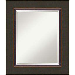 Amanti Art Milano Vanity Mirror in Bronze