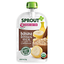 Sprout® 4-Ounce Stage 2 Organic Baby Food in Banana, Cinnamon & Brown Rice