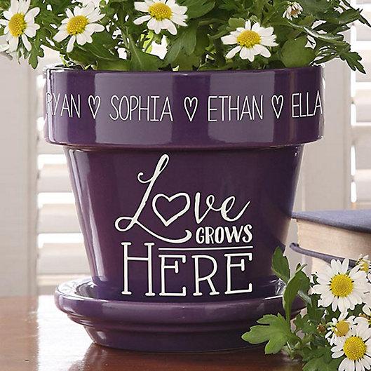 Alternate image 1 for Love Grows Here Flower Pot