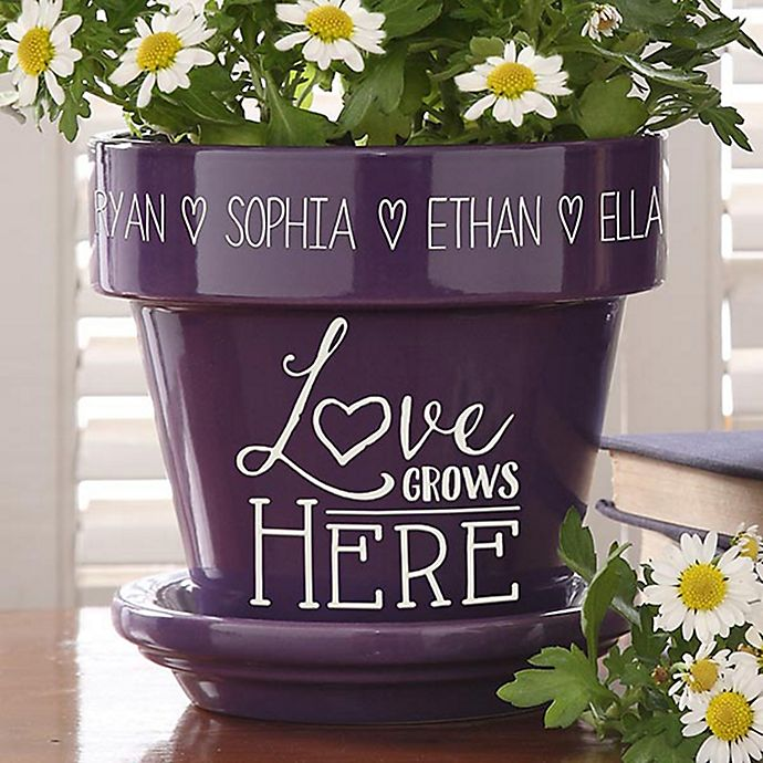 Alternate image 1 for Love Grows Here Flower Pot